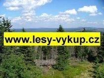 Koupíme lesy, celá ČR